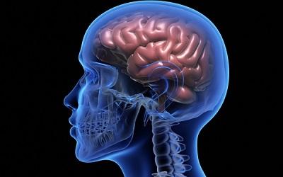 Endoskopik Beyin Cerrahisi